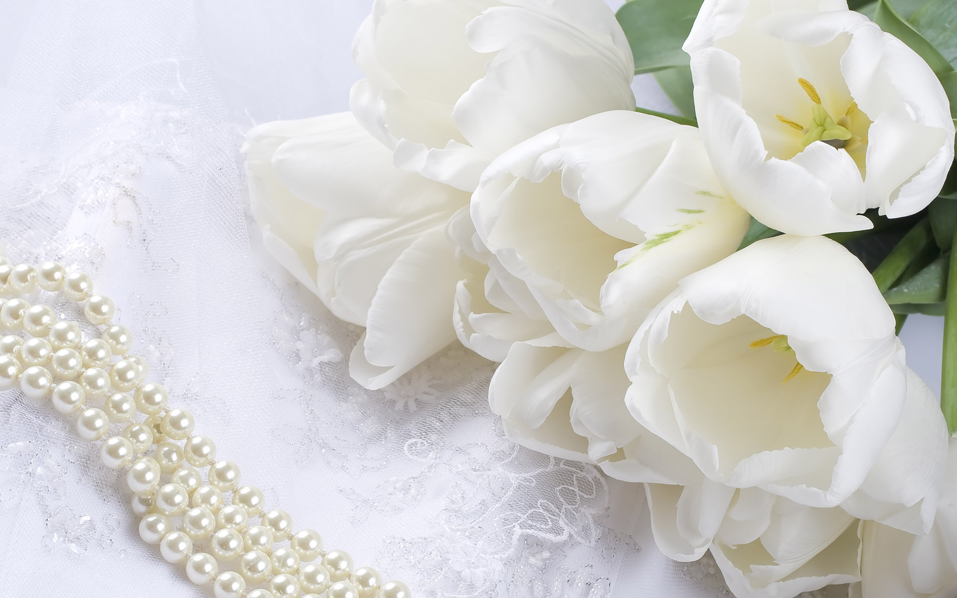 Image-detail-for-description-about-pure-white-wedding-flower-wallpaper-wp4408318