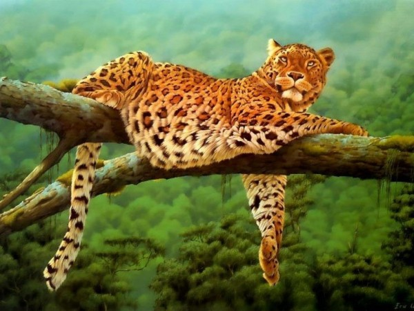 Leoparden-Leopard-wallpaper-wp6004602
