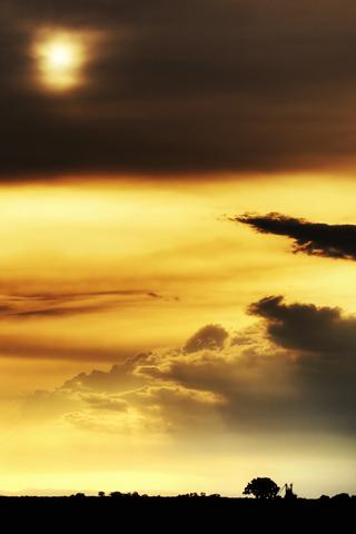 Morning-Sun-Android-HD-wallpaper-wp4608403