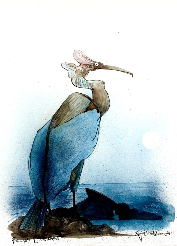 Pallas-s-Cormorant-by-Ralph-Steadman-wallpaper-wp52010108