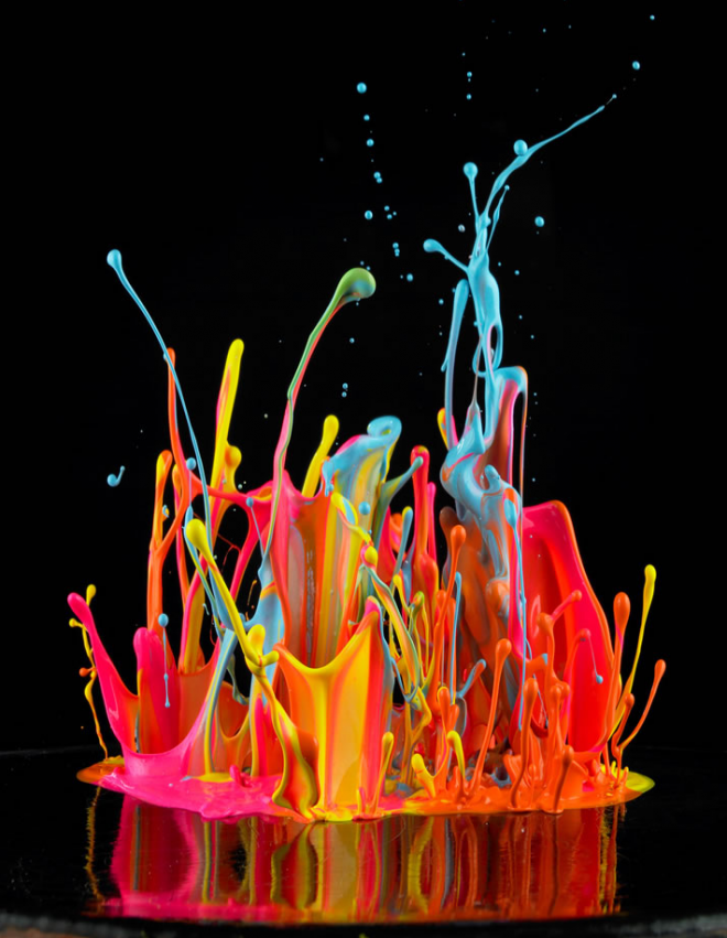 Pics-of-Exploding-Flowers-From-a-Master-of-High-Speed-Photography-Wired-Design-Wired-com-wallpaper-wp428377