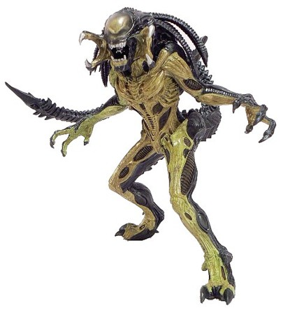 Predalien-possibly-the-greatest-contribution-from-the-AvP-serise-wallpaper-wp50011310