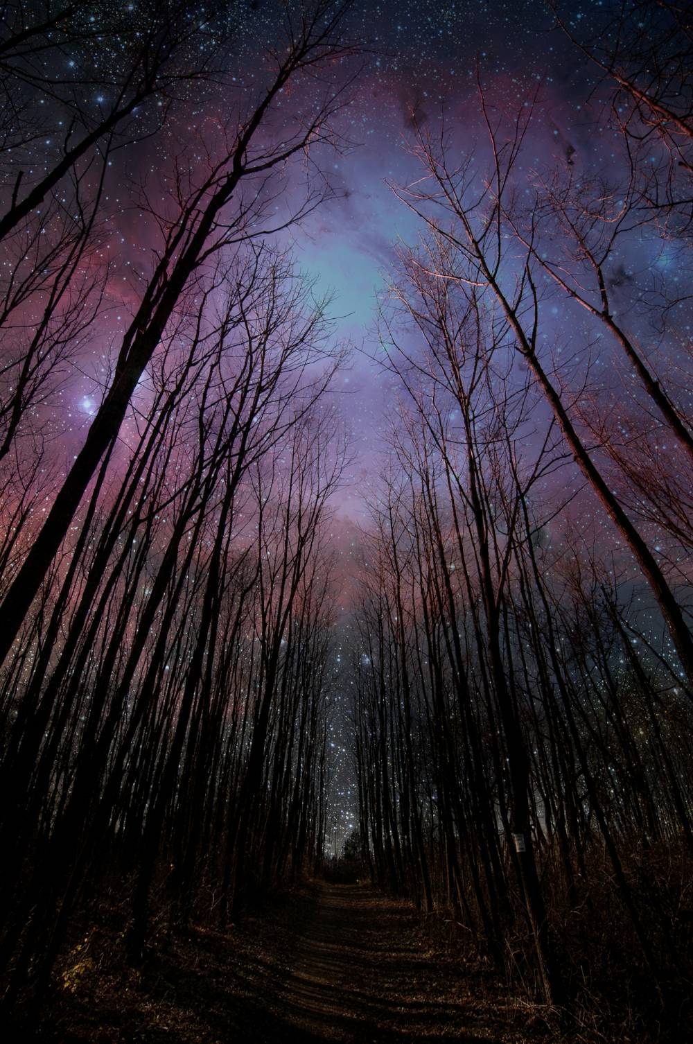 Starry-Sky-wallpaper-wp421453
