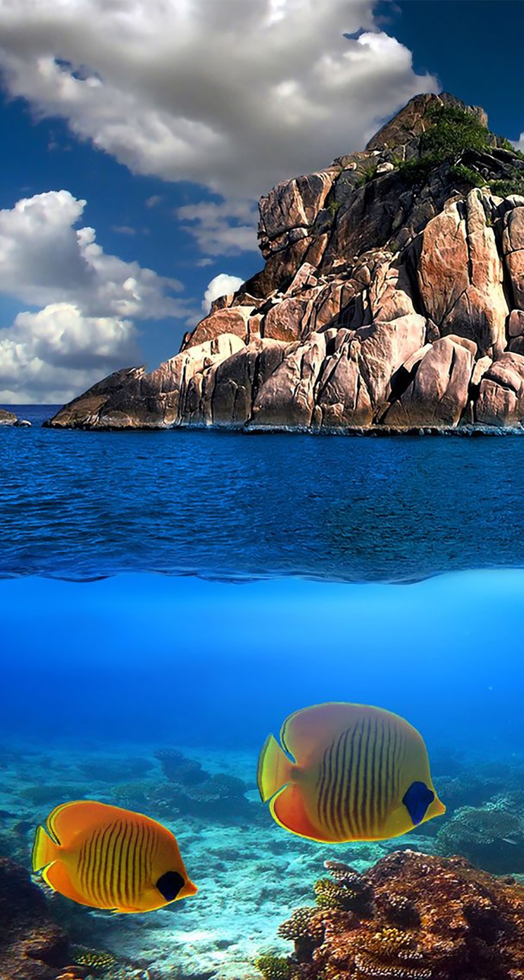 TAP-AND-GET-THE-FREE-APP-Landscapes-olorful-Sky-Sea-Ocean-Underwater-Rock-Fish-Blue-Nature-Parad-wallpaper-wp5203168