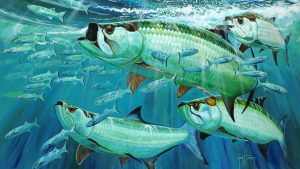 Guy Harvey tapetti