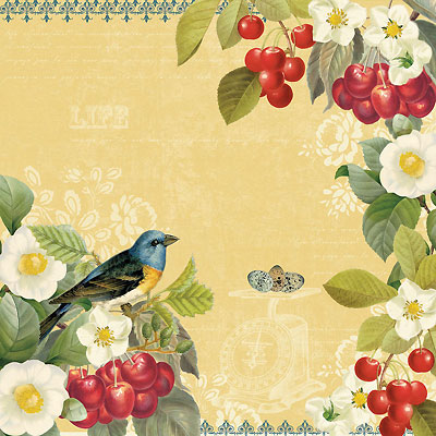 Terri-Conrad-birds-wallpaper-wp429635