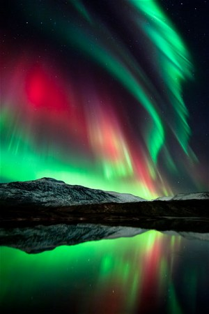 The-Northern-Lights-turn-the-sky-green-and-red-at-Mo-i-Rana-wallpaper-wp429799