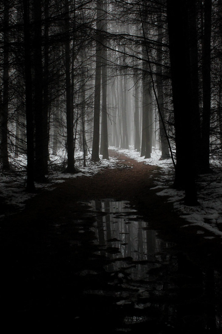 The-woods-are-lovely-dark-and-deep-But-I-have-promises-to-keep-And-miles-to-go-before-I-sleep-An-wallpaper-wp5201049