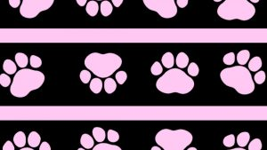 Paw Prints! wallpaper