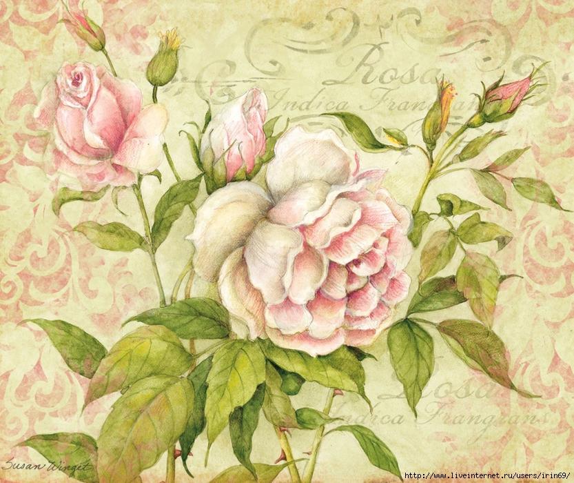 aeeadeac-wallpaper-wp423319