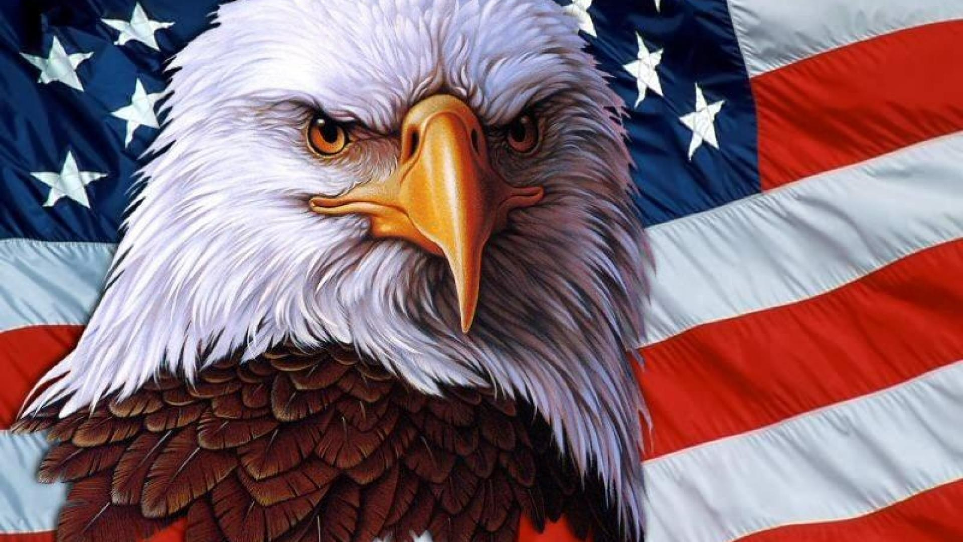 american-eagle-pic-free-for-desktop-Bronson-Archibald-1920-x-1080-wallpaper-wp3602424