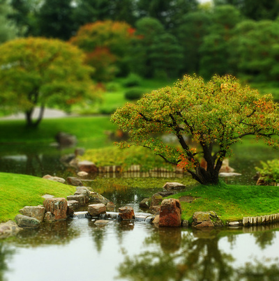 another-Tilt-Shift-example-wallpaper-wp3003267