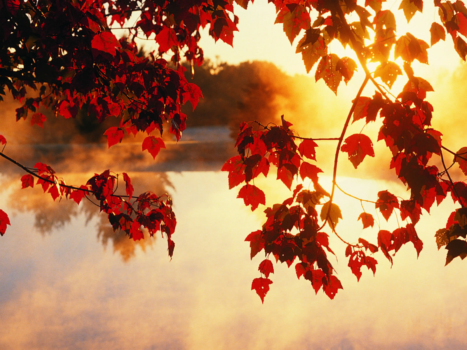 autumn-jpg-%C3%97-wallpaper-wp6002143
