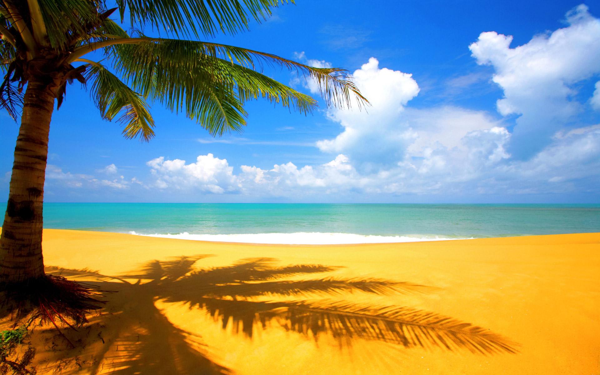 beach-nature-hd-wallpaper-wp423957-1