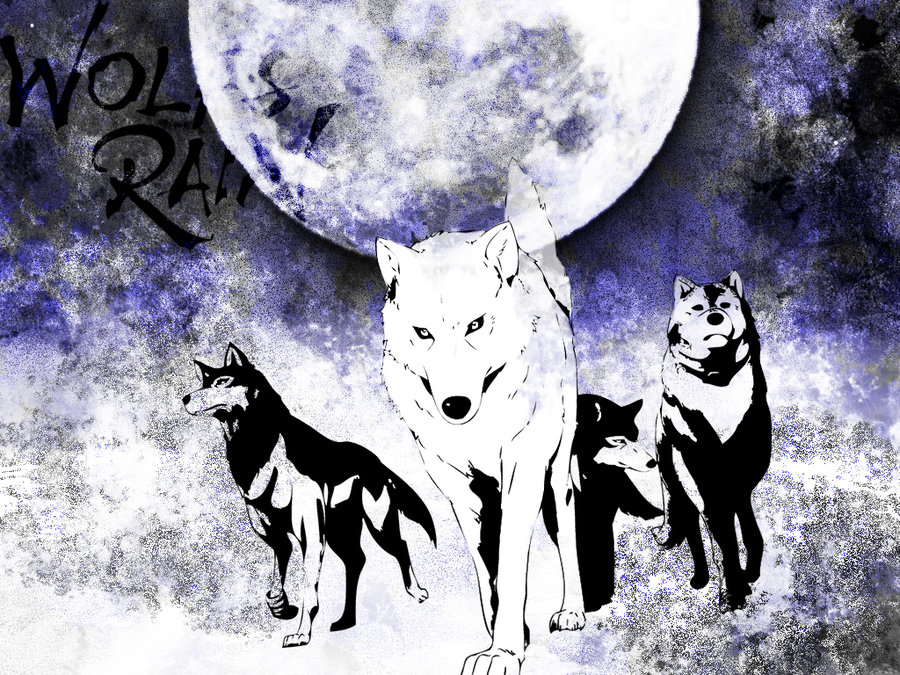 bebaccdbdcb-wolfs-rain-wallpaper-wp5801359