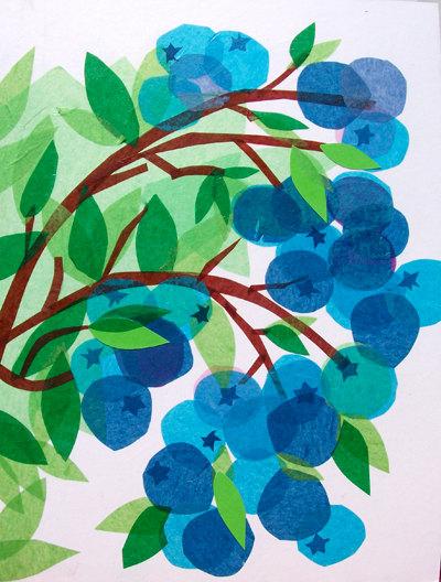 blueberries-wallpaper-wp5403757