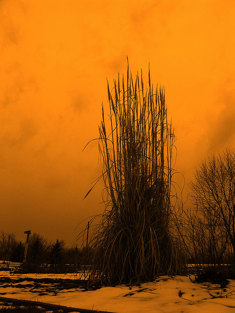 by-BITSORF-check-out-their-photos-on-flickr-Great-stuff-wallpaper-wp3403586