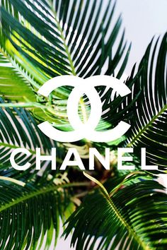 chanel-tumblr-Google-Search-wallpaper-wp3004275