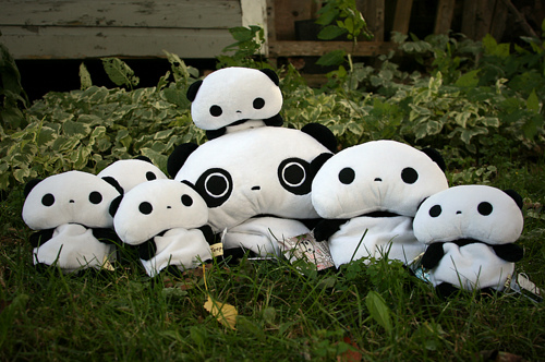 check-it-out-a-whole-family-of-tare-pandas-wallpaper-wp4405688