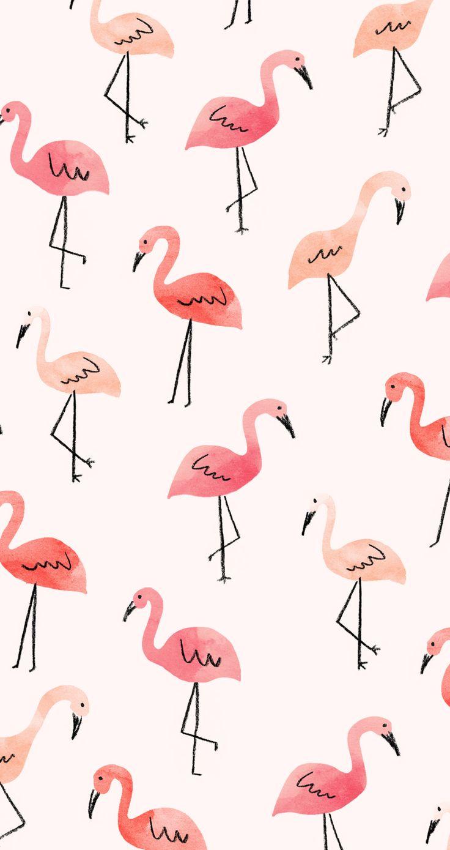 flamingo-pattern-wallpaper-wp5206562