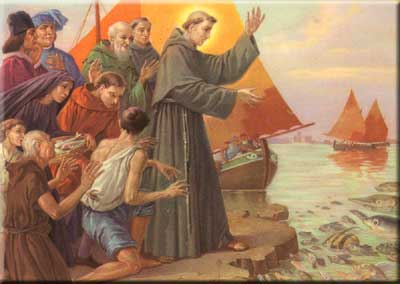 miracle-of-saint-Anthony-speaks-to-the-fish-wallpaper-wp5807948