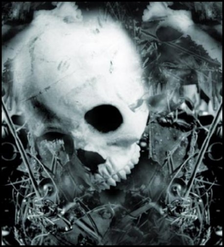 skull-danger-bones-face-jpg-%C3%97-wallpaper-wp46010032