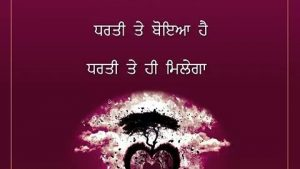 Punjabi thought wallpaper