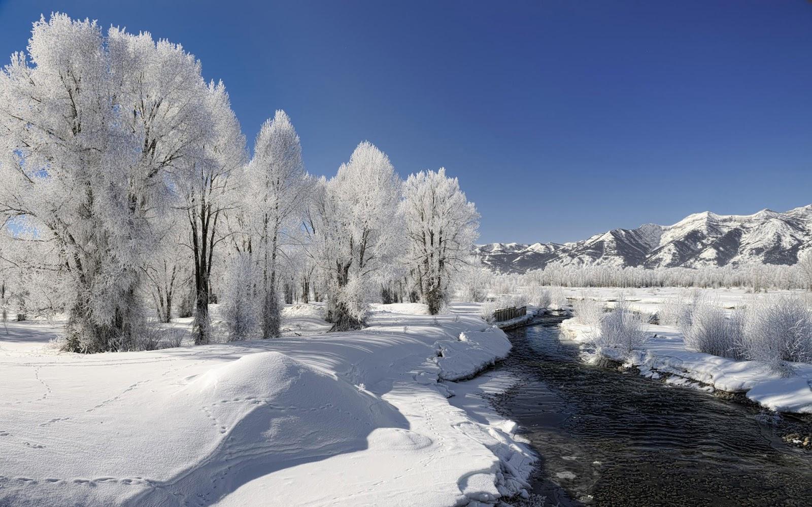 winter-Beautiful-Winter-Beauty-of-Winter-season-Nature-wallpaper-wp4210706