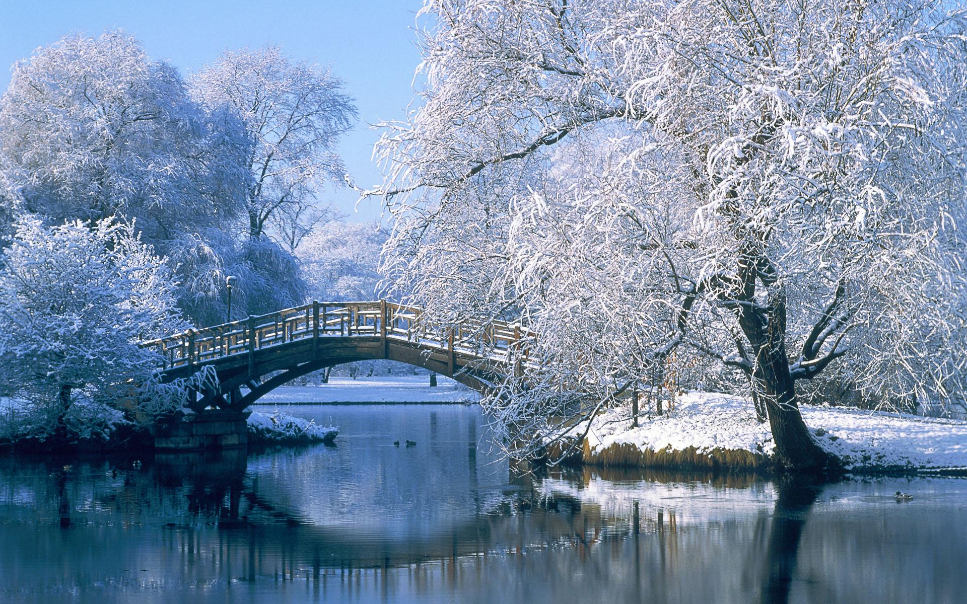winter-Fabulous-Winter-wallpaper-wp4210701