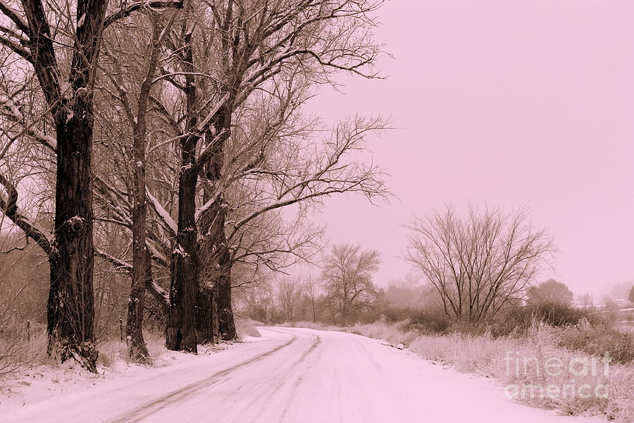 winter-pink-Cerca-con-Google-wallpaper-wp560857