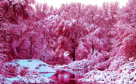 winter-pink-Cerca-con-Google-wallpaper-wp560996