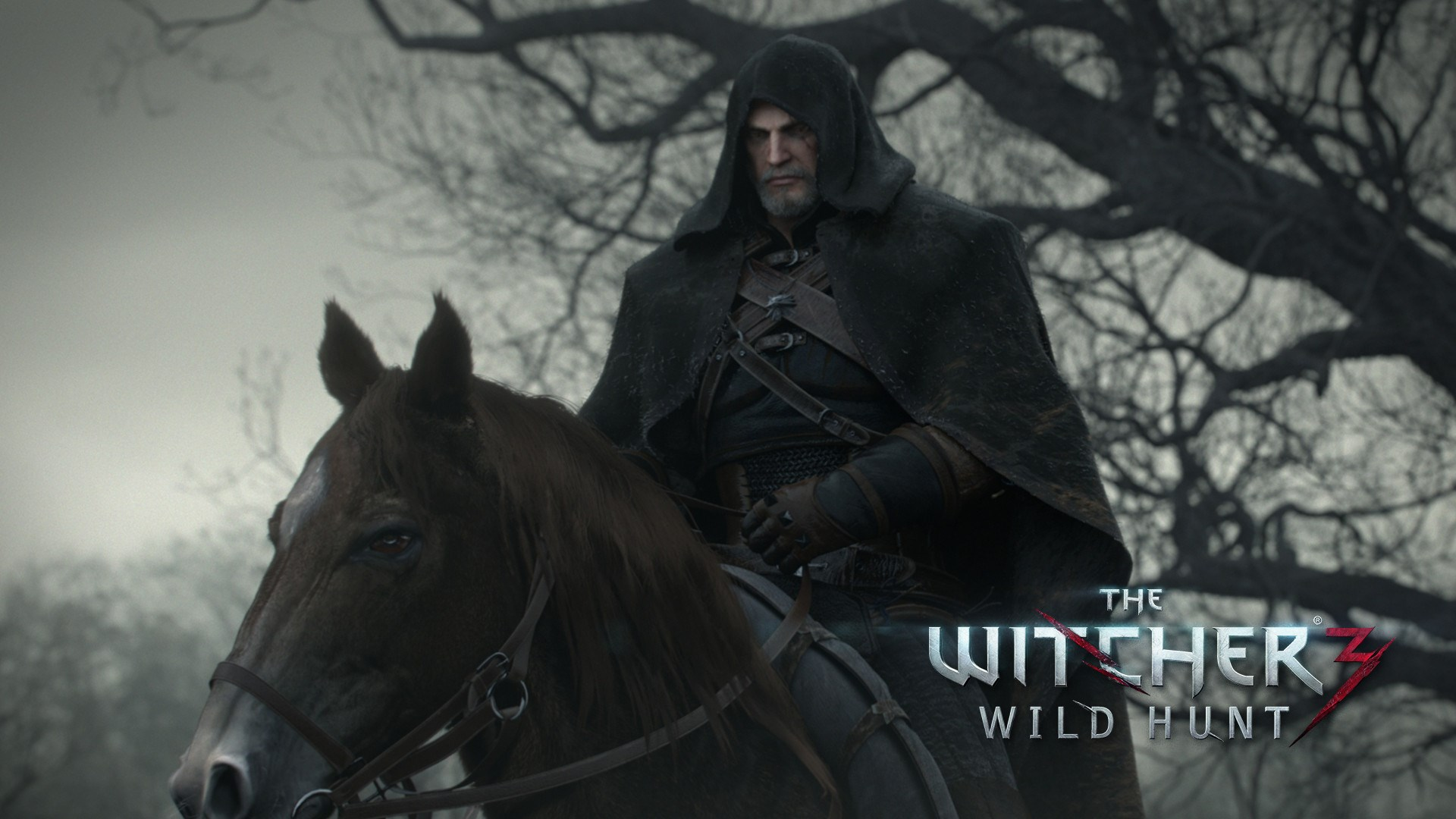 1920x1080-free-desktop-downloads-the-witcher-wild-hunt-wallpaper-wpc580727