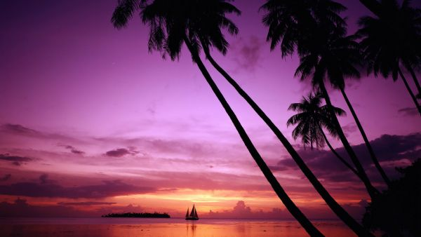 A-beautiful-picture-of-Sailboat-Silhouette-At-Dusk-downloaded-from-http-alliswall-com-wallpaper-wp3602071