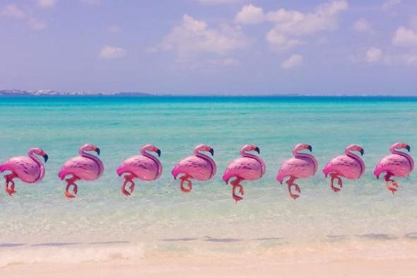 A-praia-surpreendente-de-Gray-Malin-Fashionismo-wallpaper-wpc5801882