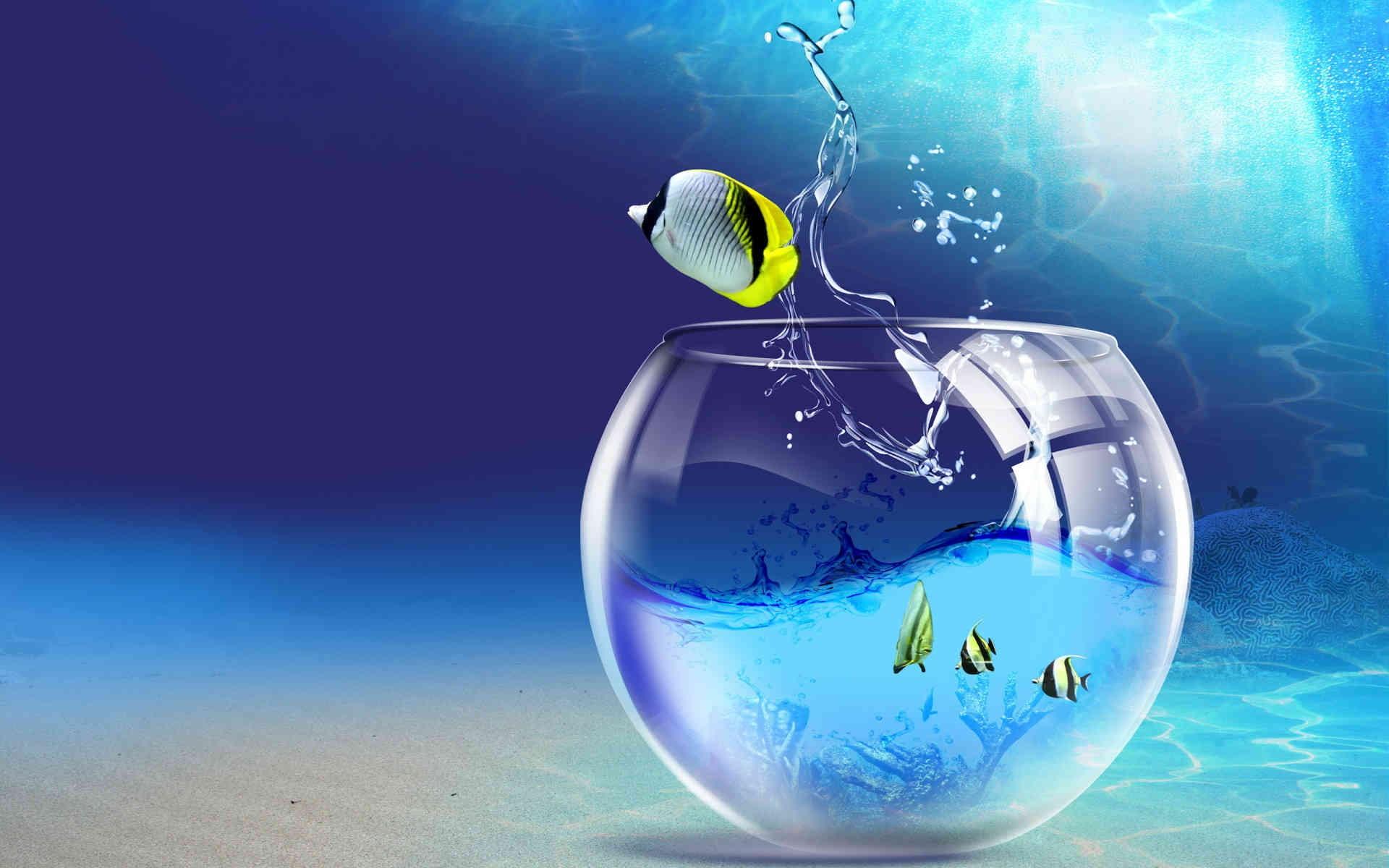 Beautiful-Fish-Free-Download-HD-Pop-wallpaper-wp3603111