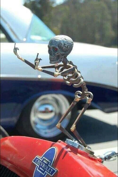 Best-hood-ornament-ever-wallpaper-wpc9002788