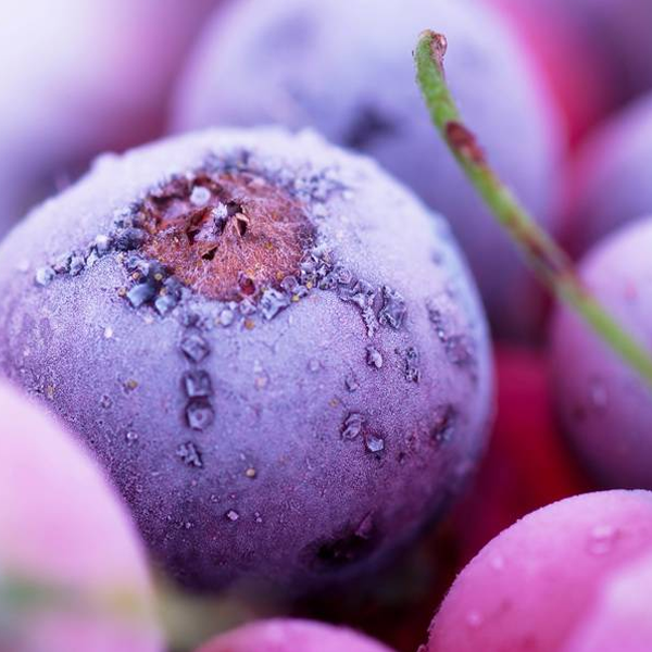 Blueberry-Seeds-wallpaper-wp3603556