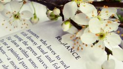 Book-Tag-Flowers-Book-Soft-Story-Spring-Single-Flower-Desktop-for-HD-High-Definitio-wallpaper-wp3603646