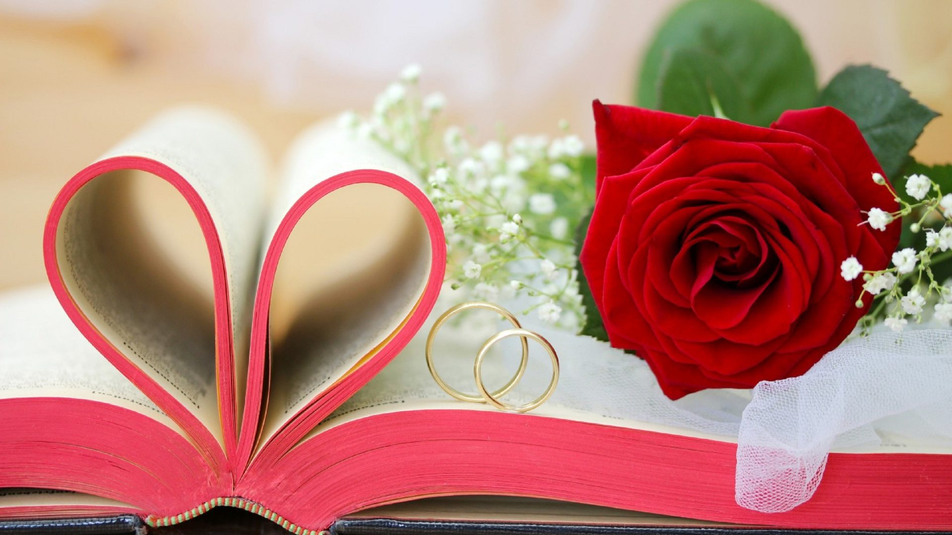 Book-Tag-Roses-Love-Still-Beauty-Heart-Colors-Lovely-Valentine-Seasons-Day-Rings-Creative-February-wallpaper-wpc5803008