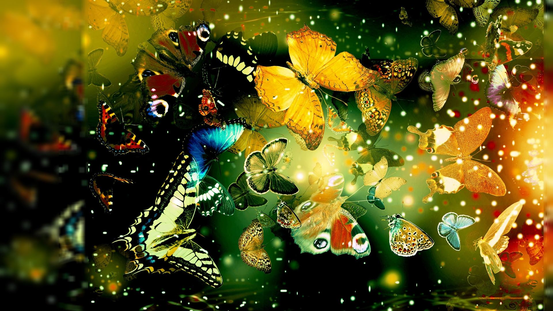 Butterfly-1920x1080-Need-iPhone-S-Plus-Background-for-IPhoneSPlus-Follow-iPhon-wallpaper-wpc5803101
