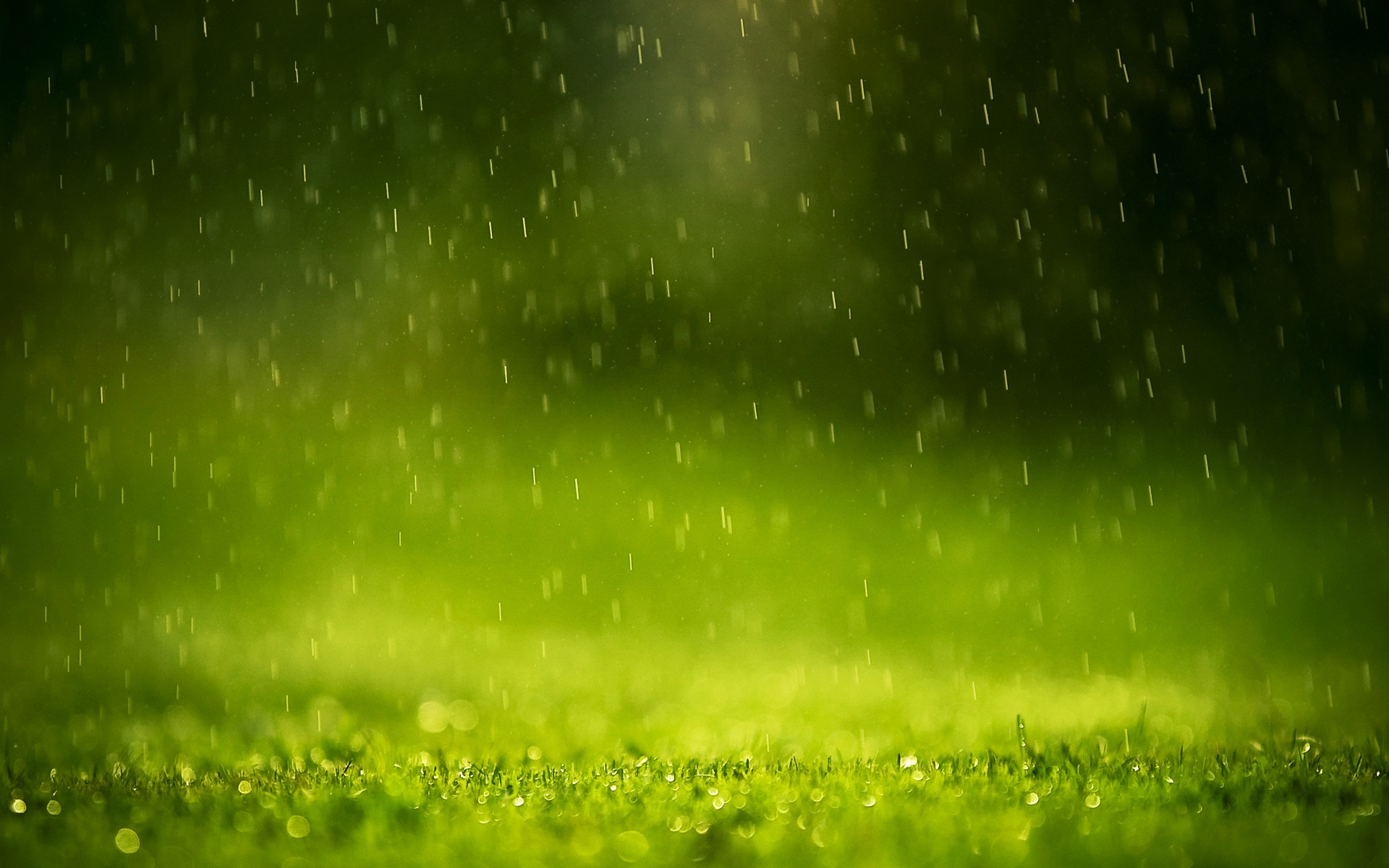 Click-here-to-download-in-HD-Format-Rain-Drops-http-www-super-in-wallpaper-wpc5803524