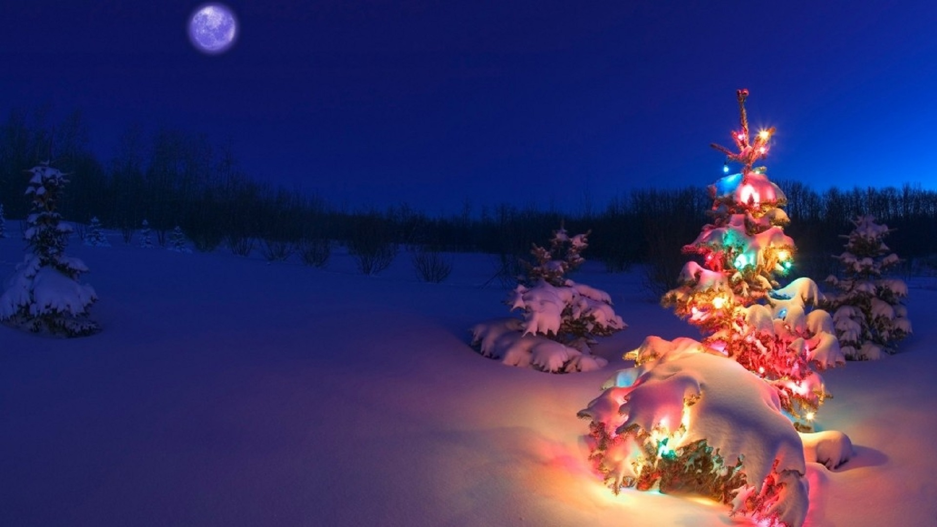 Collection-Of-Christmas-Tree-HD-1920x1080-See-more-on-Classy-Bro-wallpaper-wpc9003647
