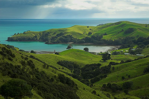 Coromandel-New-Zealand-we-spent-two-days-in-Auckland-New-Zealand-It-was-not-nearly-enough-I-wallpaper-wpc9003829