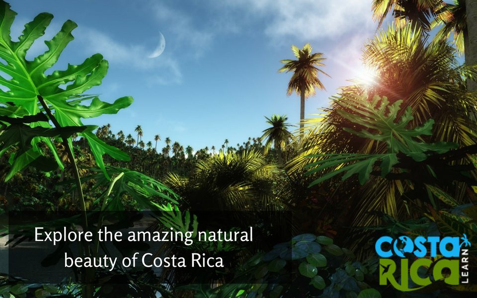 Costa-Rica-is-a-vibrant-country-with-full-of-incredible-natural-beauty-where-you-can-discover-waterf-wallpaper-wpc5803740