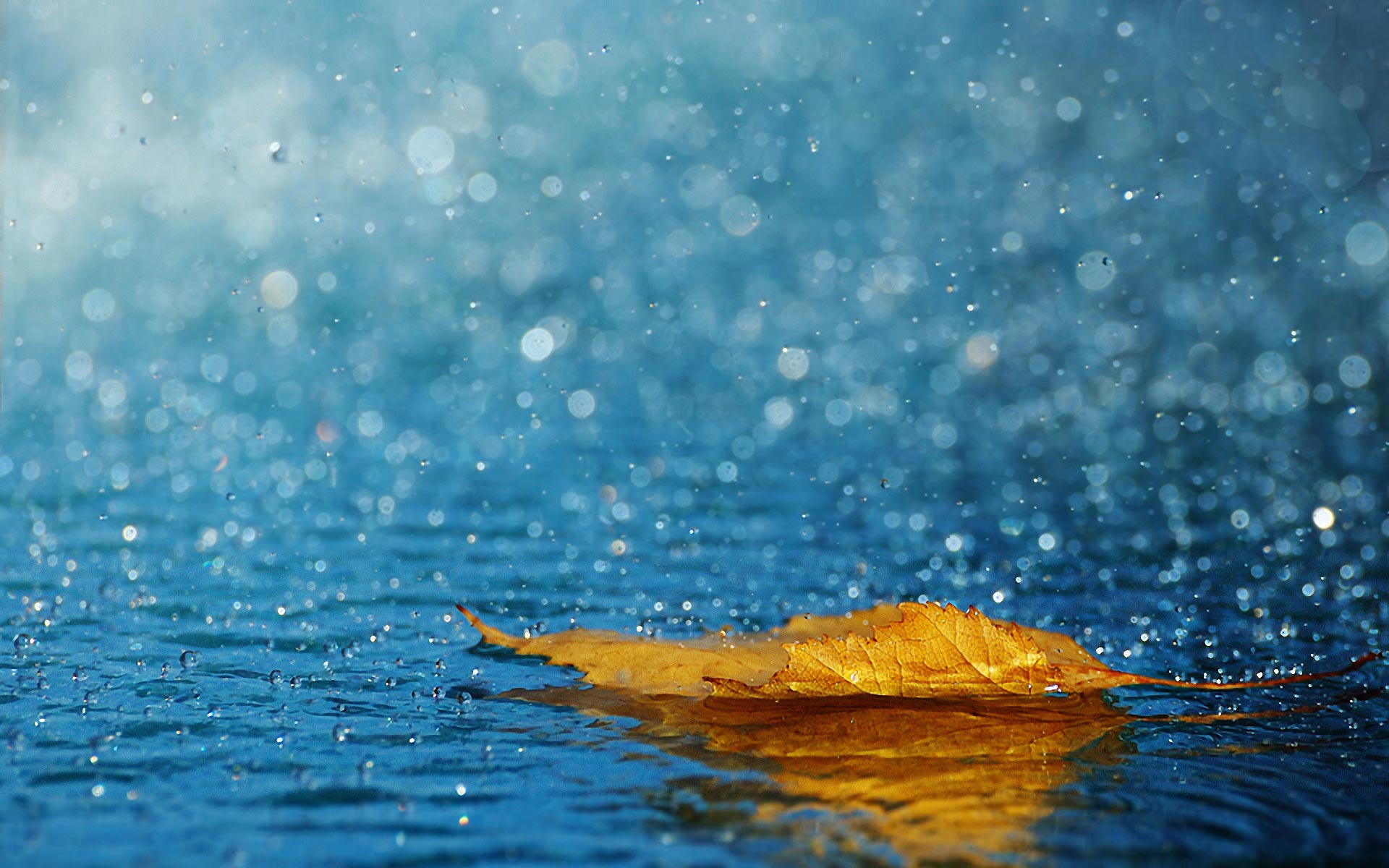 Depois-da-chuva-acabar-ir%C3%A1-sobrar-o-cheiro-da-terra-e-o-sil%C3%AAncio-triste-proveniente-da-chuva-http-wallpaper-wpc5804003