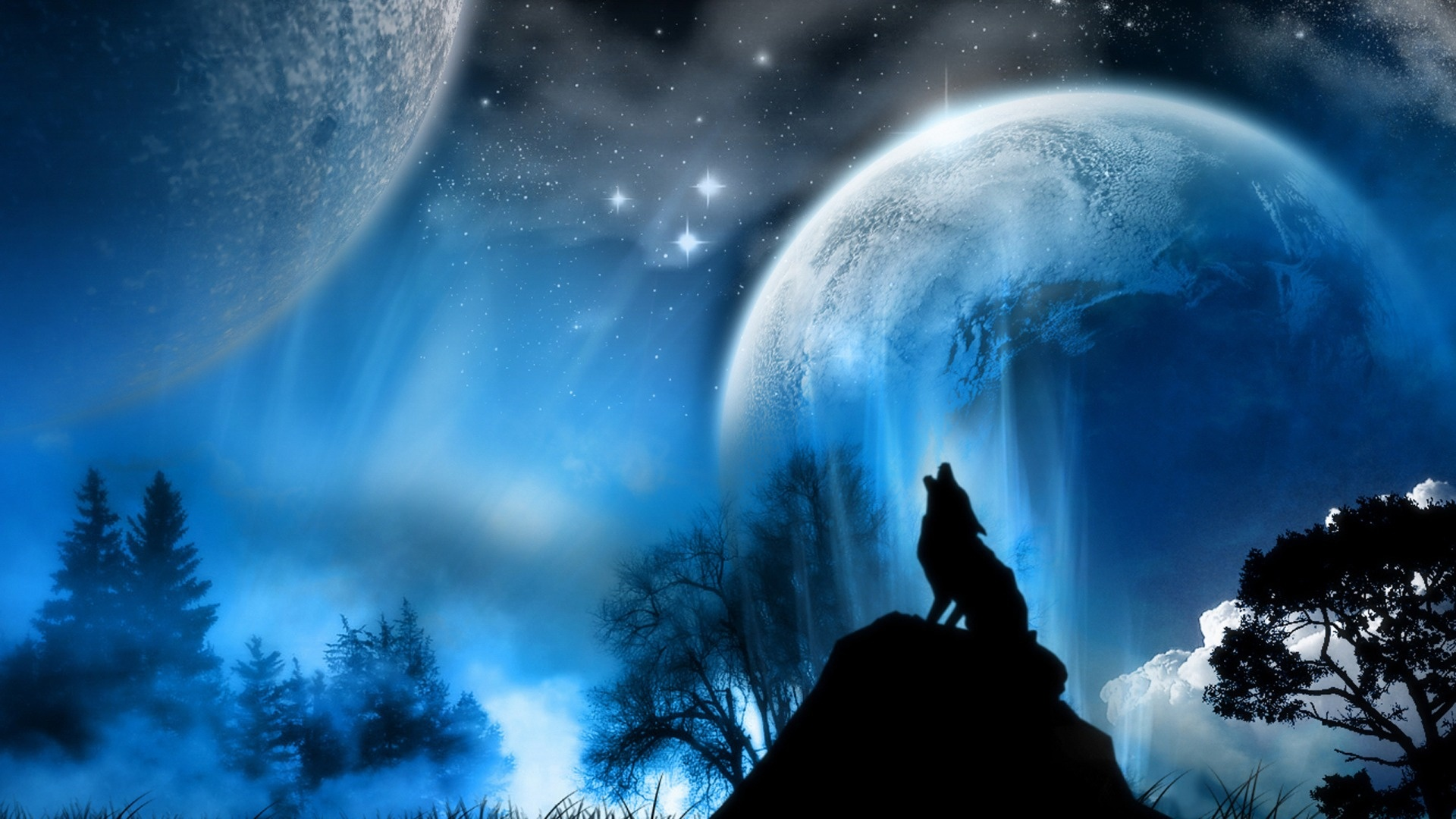 Desktop-best-wolf-hd-Wolf-Hd-Wolf-Desktop-Best-Wolf-Fo-wallpaper-wpc5804078