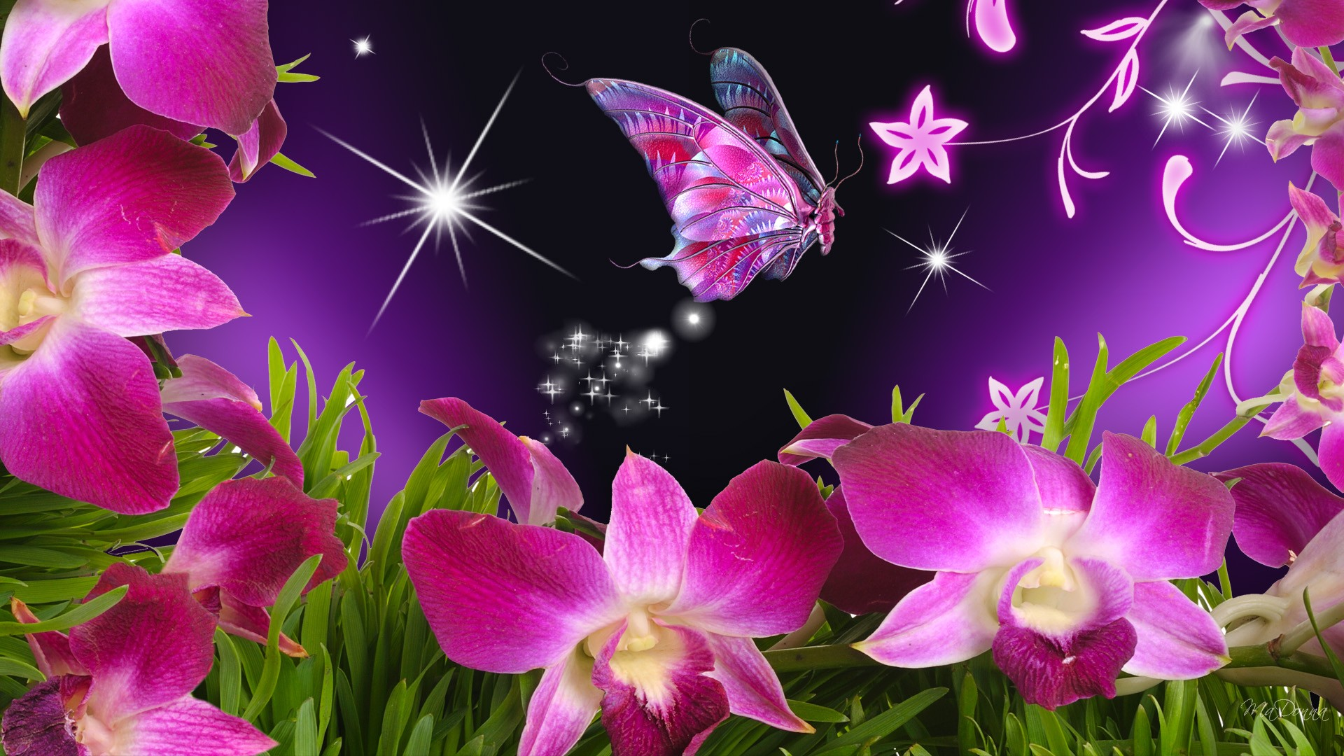 Download-Butterflies-And-Flowers-Vector-Butterfly-Orchid-cakepins-com-wallpaper-wpc5804391