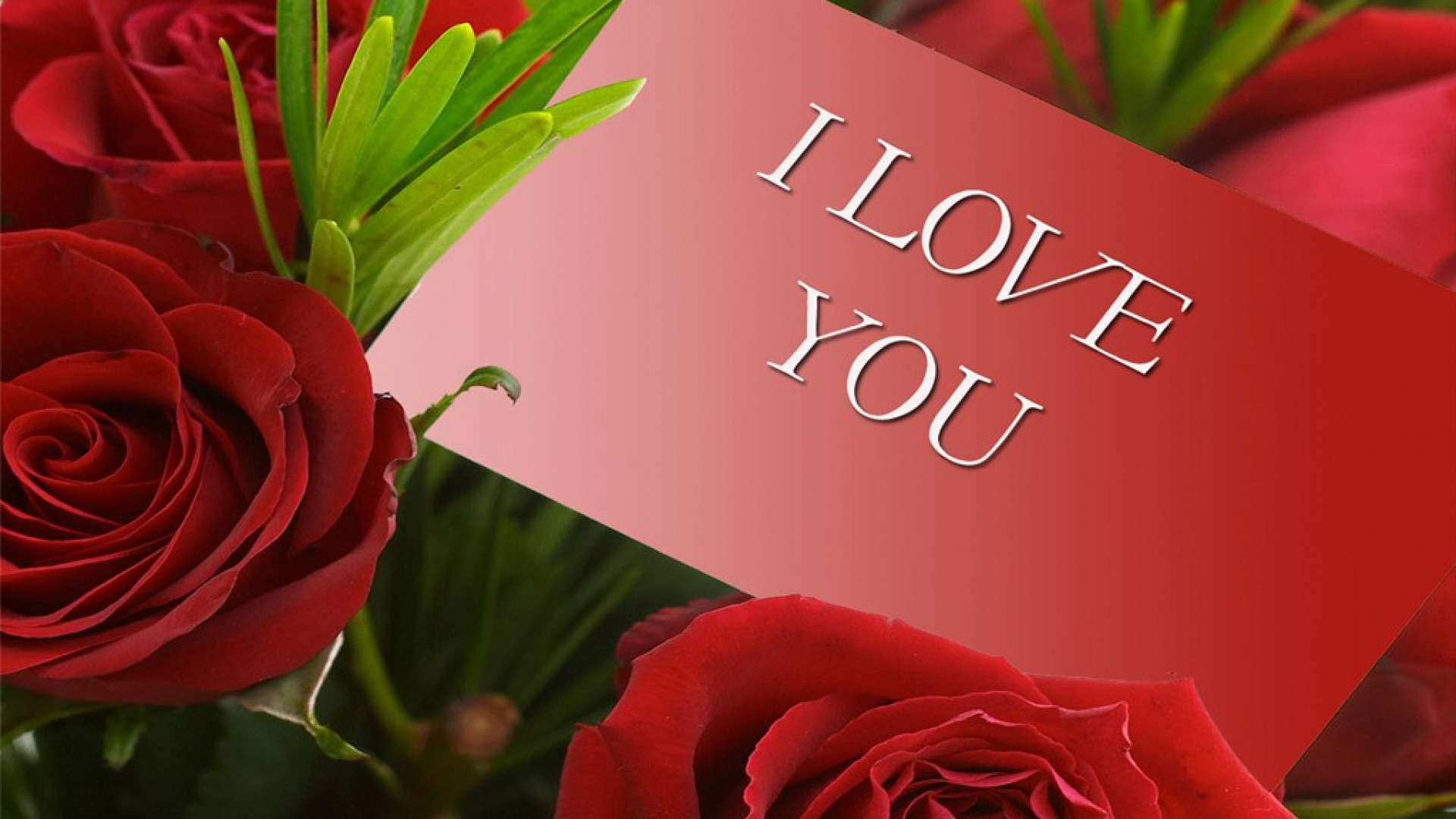 Download-download-hd-of-i-love-you-HD-Download-download-hd-of-i-love-you-HD-wallpaper-wpc5804283