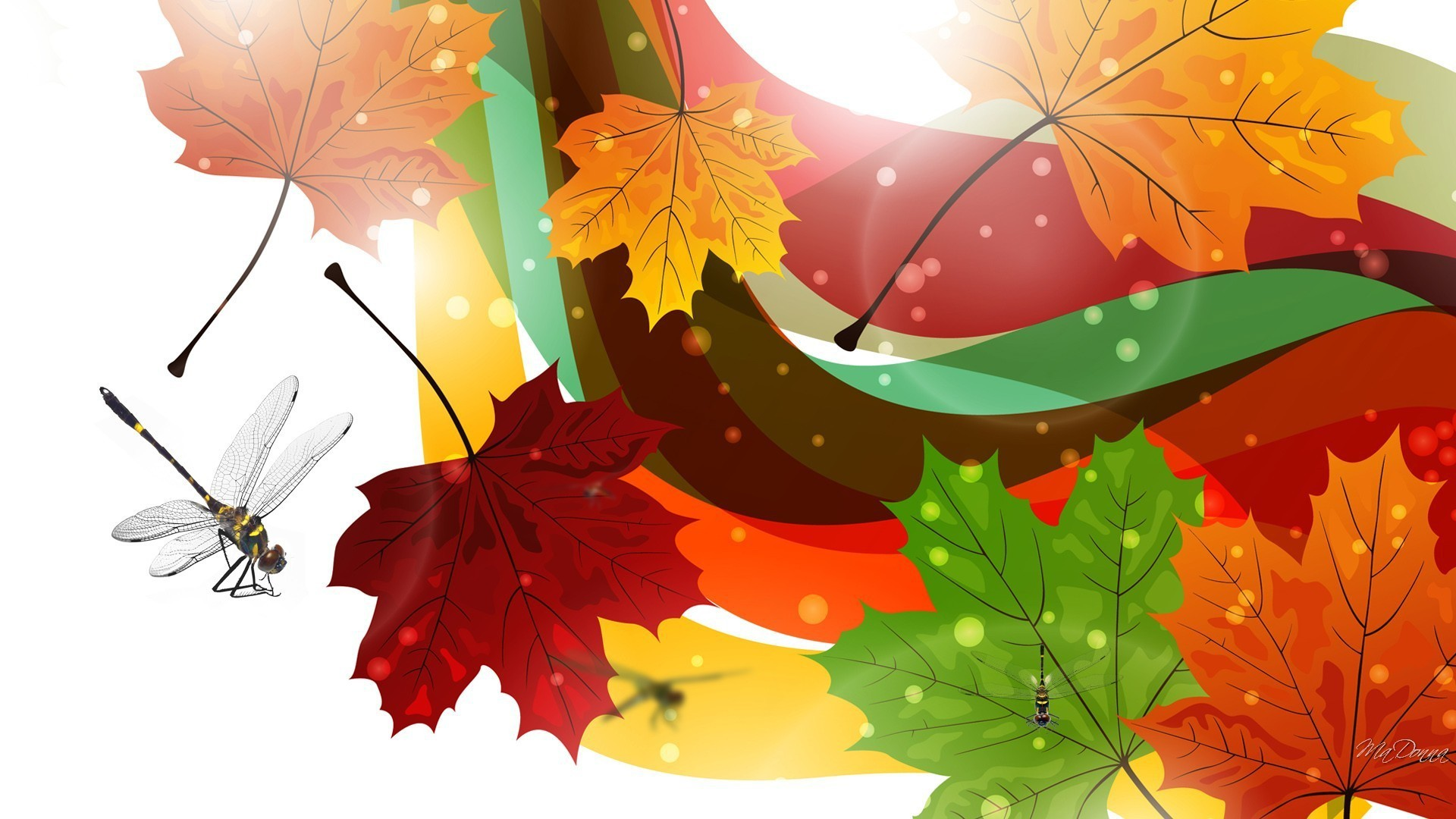 Dragonflies-of-fall-1920x1080-fall-via-www-all-in-wallpaper-wp3804892
