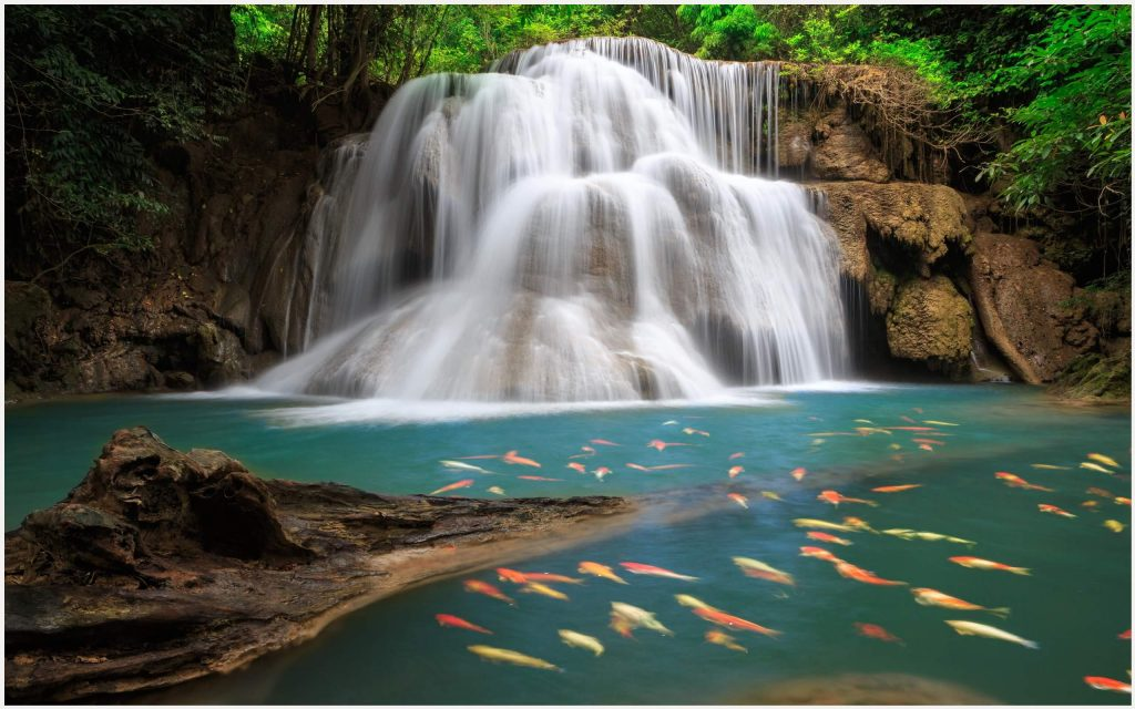Fish-Lake-And-Waterfall-fish-lake-and-waterfall-1080p-fish-lake-and-waterfall-wallpaper-wp3605583